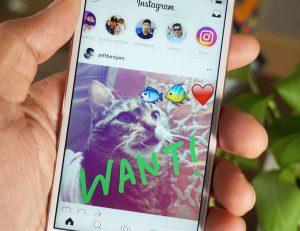 Исчезающий контент в соцсетях