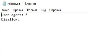Директива сканирования всего сайта