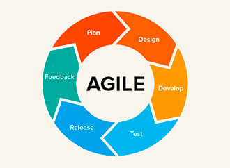 Why do you need Agile for business and what is it?