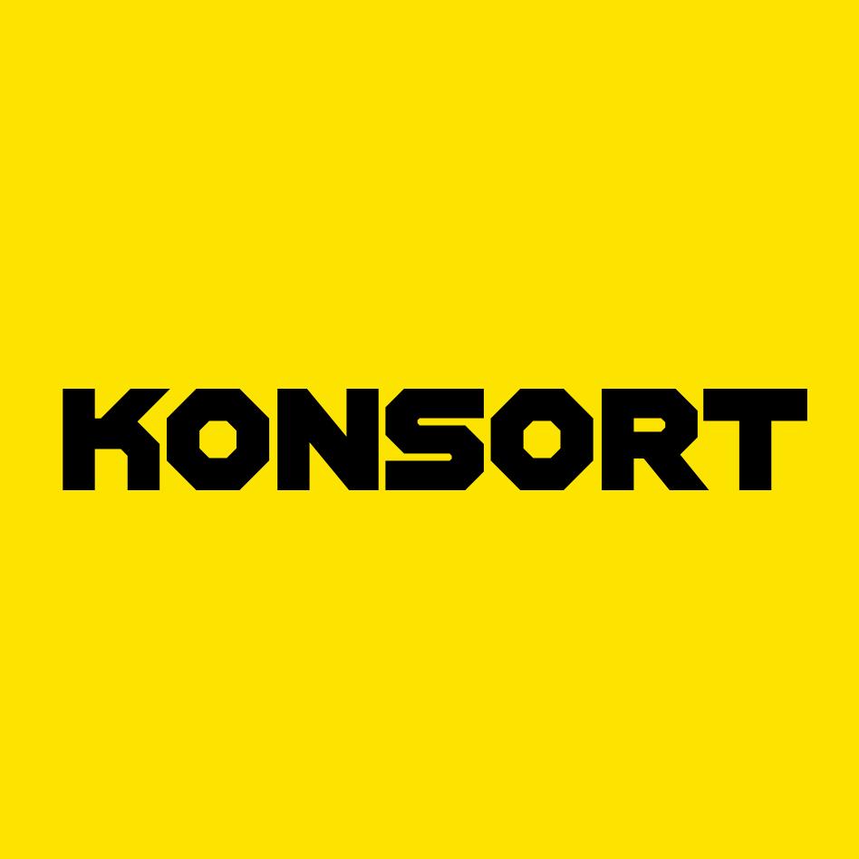 Таргетированная реклама для b2b производителя KONSORT